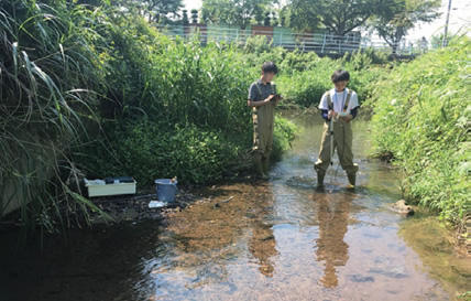 流域からの水質汚染物質の流出機構解明