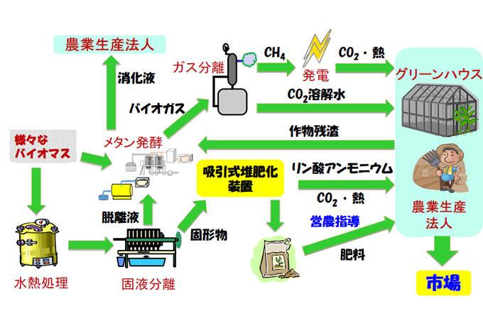 バイオマス生産および利活用研究