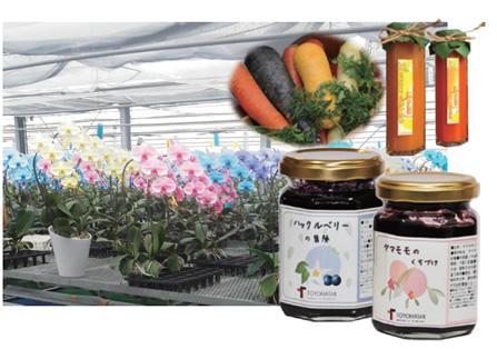 東三河地域の農業発展のための新たな農業振興方策
